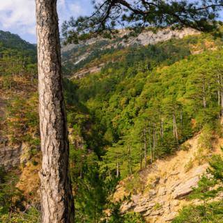 Ущелье Уч-Кош в Крыму